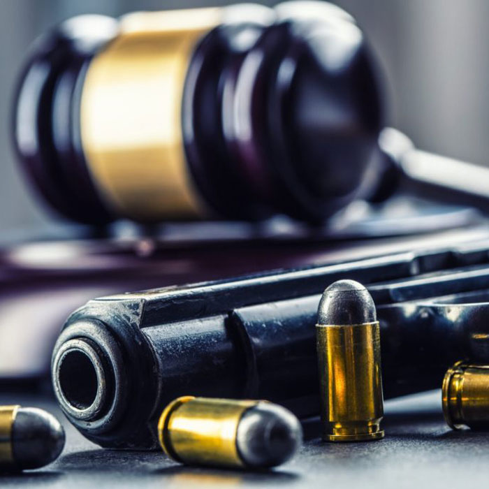 Gavel, Gun and Bullets